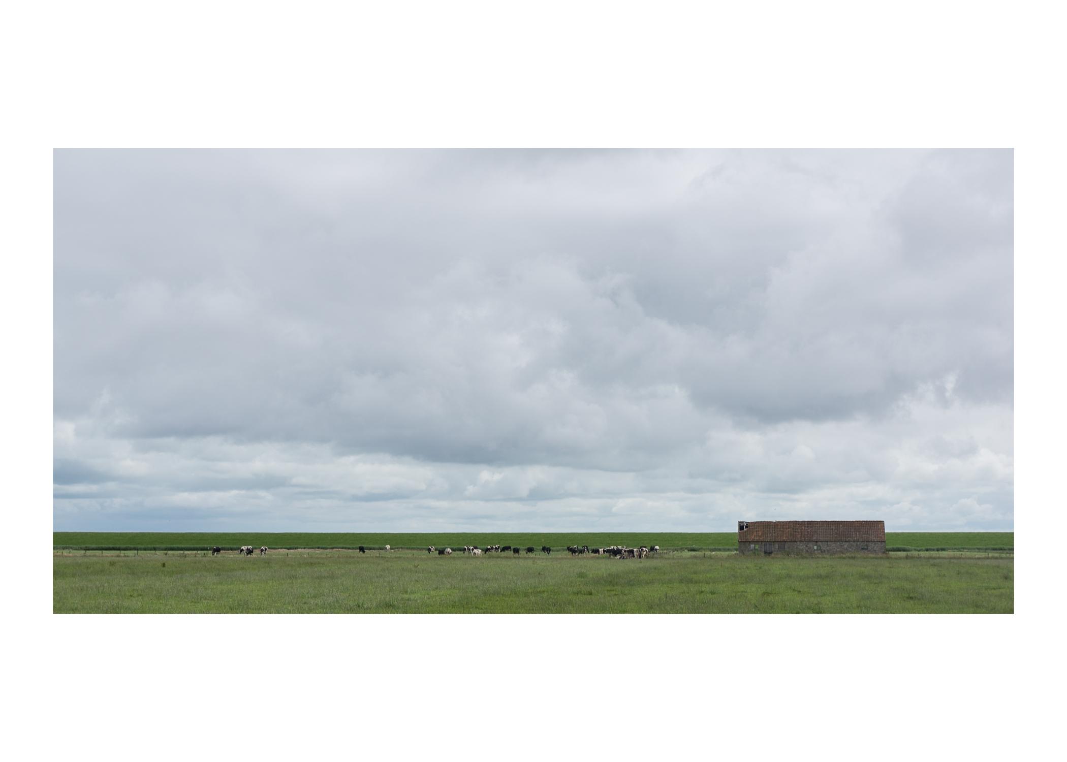 2013 Ameland zuidkust zeedijk